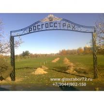 Кованая арка г.Тюмень набережная реки Туры